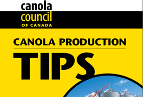 canola-tips-publication