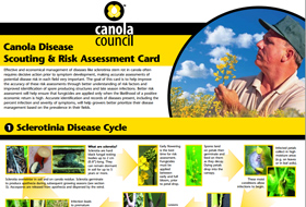 disease-scouting-publication