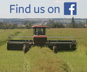 Find Alberta Canola on Facebook