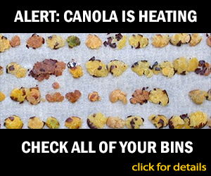 canola is heating - check your bins
