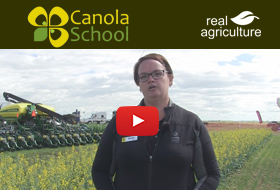 Ultimate Canola Challenge