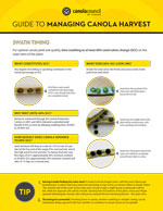 Canola Harvest Guide